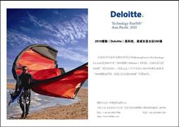 2011年德勤高科技、高成长中国50强